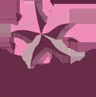 De Sterre Stichting, te Raalte, is op 30 januari 2009 opgericht ter nagedachtenis aan Sterre Freriksen die op 8 jarige leeftijd, op 3 juli 2007, is overleden aan de gevolgen van leukemie.